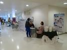 IV Encontro de Hotelaria Hospitalar da Região Serrana-11